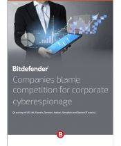 Companies blame competition for corporate cyberespionage