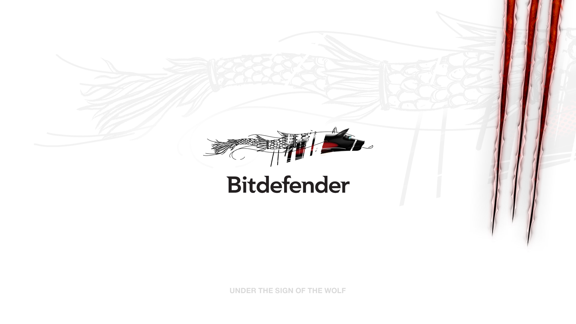 Bitdefender 2013 white wallpaper