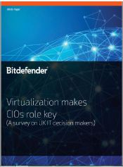 Virtualization makes CIOs role key (UK)