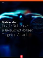 Inside Netrepser – a JavaScript-based Targeted Attack