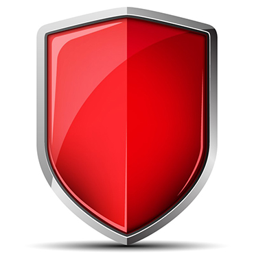 Cybersecurity Maximum Protection shield