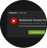 Bitdefender blocking websites