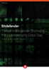 Bitdefender Threat Intelligence: Shrinking the Cybersecurity Data Gap